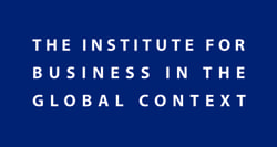 The Institute for Business in the Global Context Logo