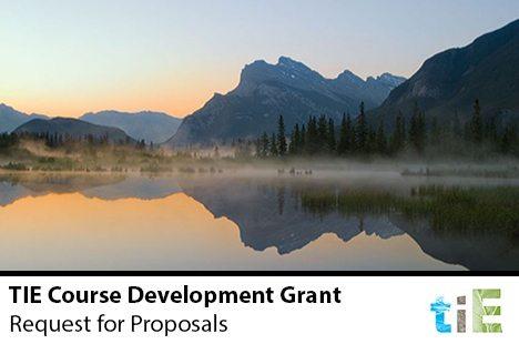 TIE 2014-2015 Course Development Grant