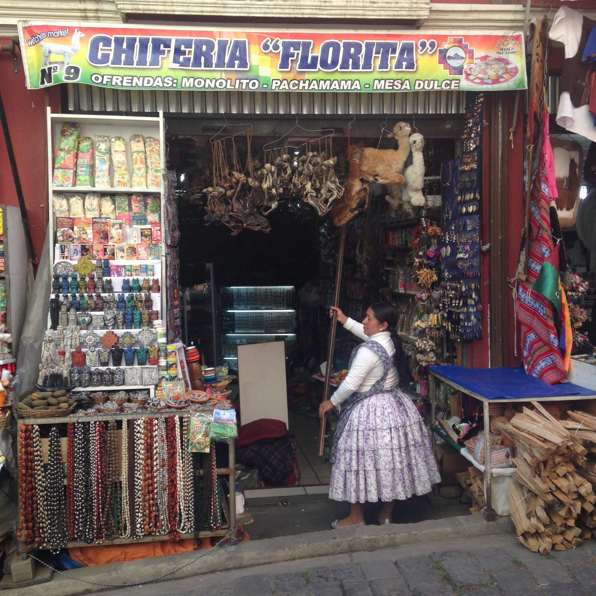TIE Fellow 2016-17_Caitlin Matthews_research sharing_trip to La Paz, Bolivia