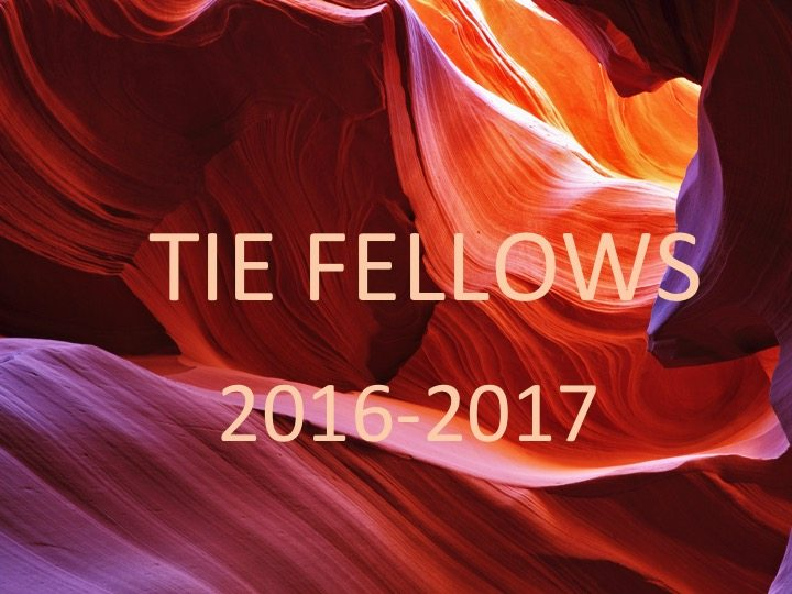 TIE FELLOWS_2016-2017