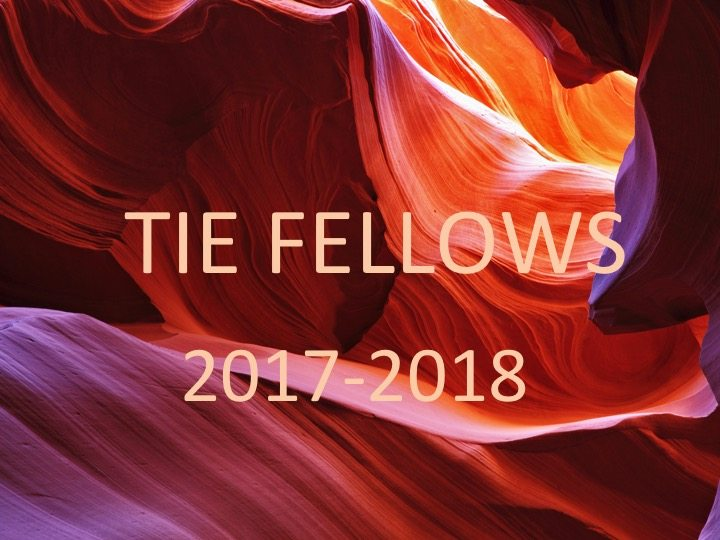 TIE New Fellows_2017-2018 cohort