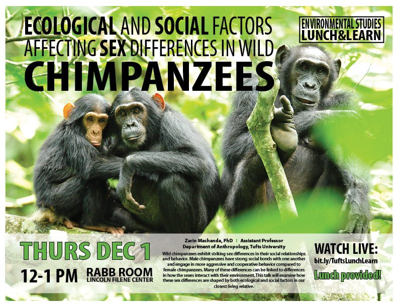 Ecological and Social Factors_Chimpanzees_TIE_Lunch & Learn