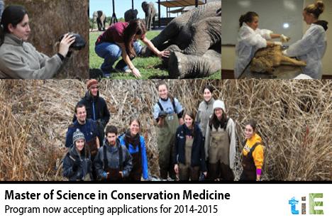 TIE_Tufts_Master of Science in Conservation Medicine Program