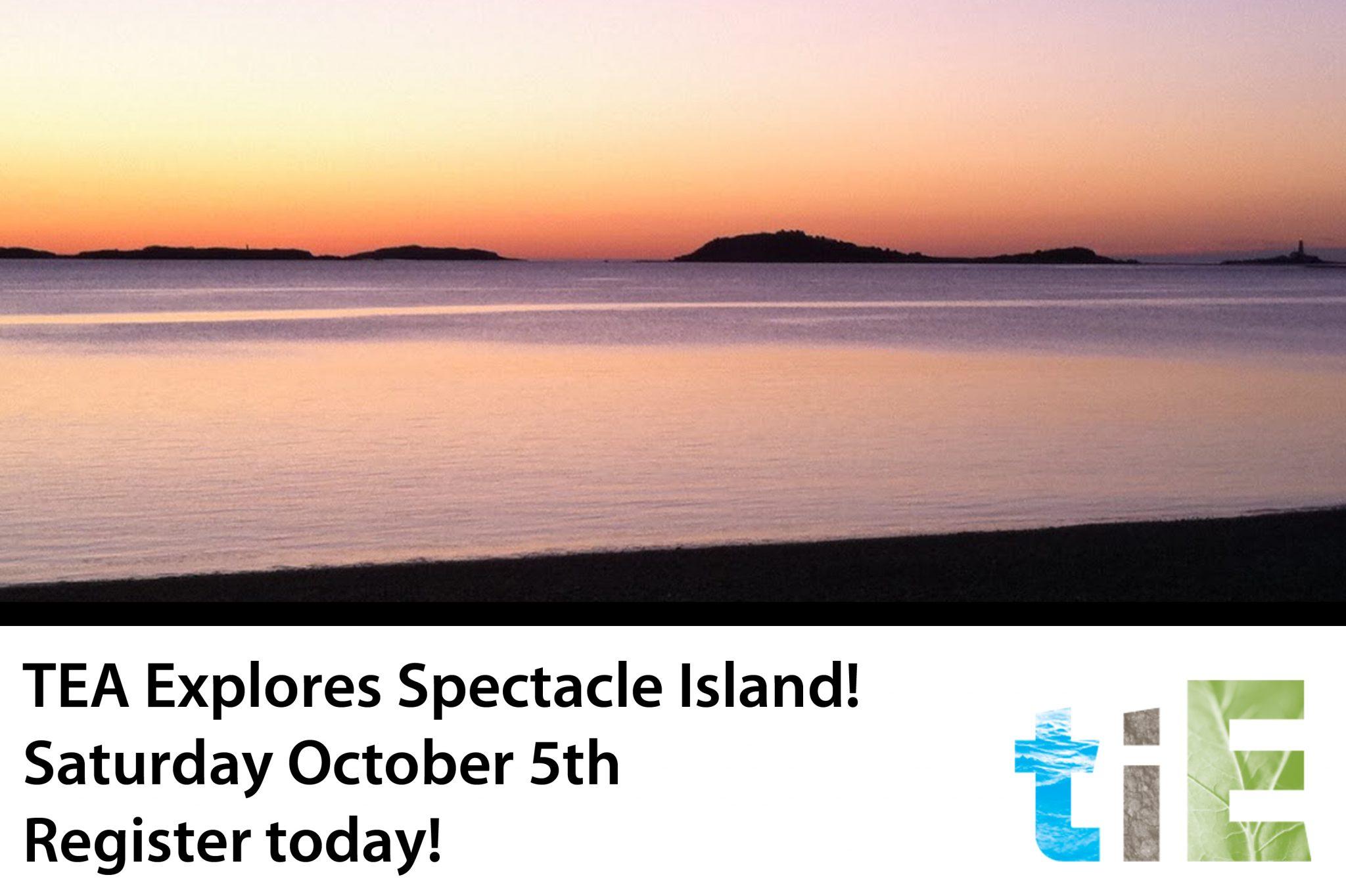 TIE_TUFTS ENVIRONMENTAL ALUMNI FALL HIKE: EXPLORING SPECTACLE ISLAND