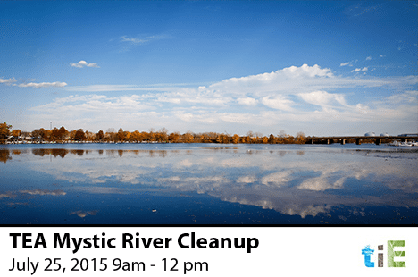 TEA Mystic River Cleanup_2015_TIE